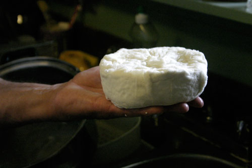 Semi soft Unripened Cheese:  step by step