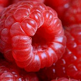 raspberry_beer
