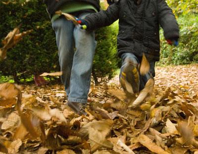 kicking_leaves