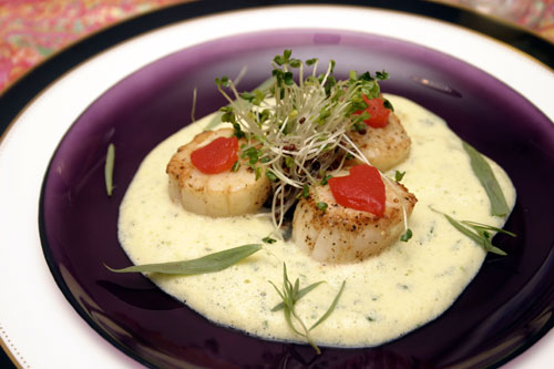 Seared Scallops with Champagne Tarragon Sabayon