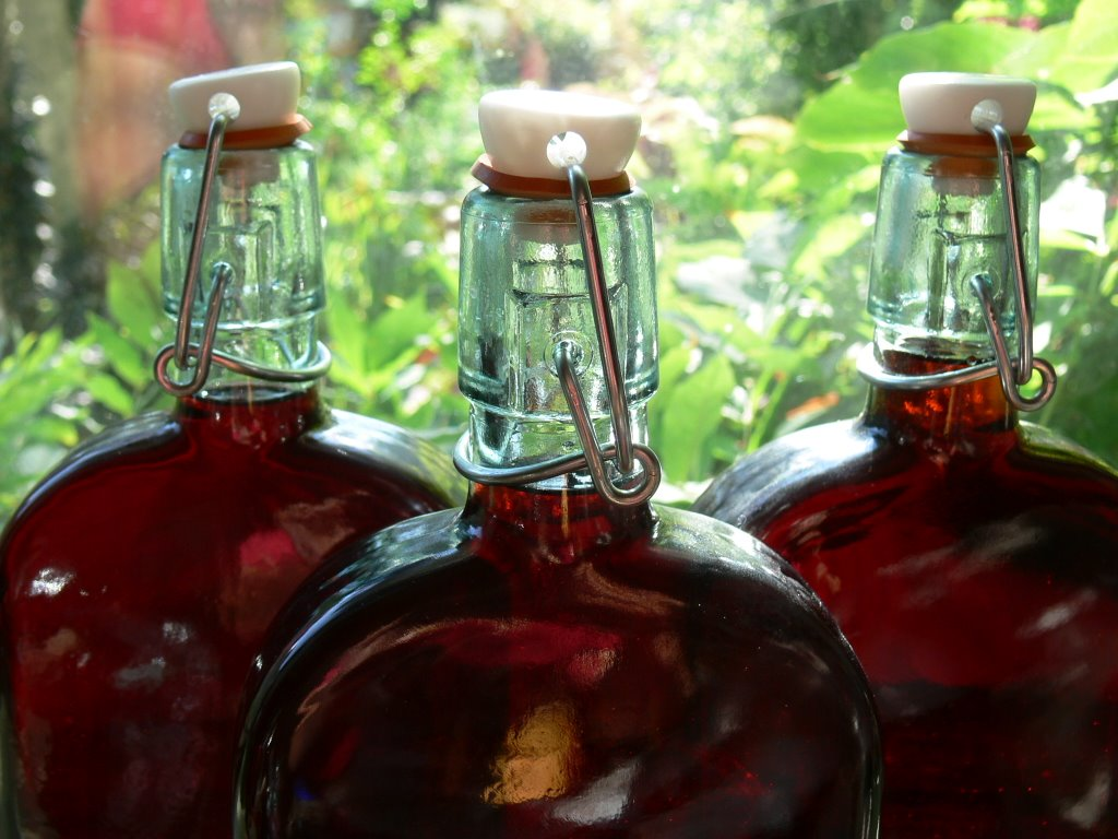 sloe_gin_1